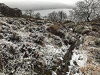 Rowerdennan to Loch Arklet. Gets a wee bit muddy at times
