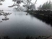 Rowerdennan to Loch Arklet. 576_sm_011.jpg