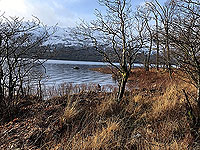 Rowerdennan to Loch Arklet. 576_sm_016.jpg