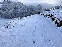 Sheriffmuir loop. A lovely winter morning