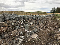 Sheriffmuir loop. We watched the new stone wall being built over several runs