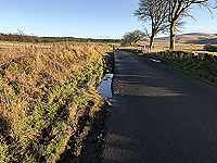 Sheriffmuir loop. Towards the monument