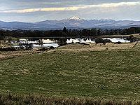Sheriffmuir loop. View to Ben Ledi