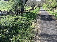 Sheriffmuir loop. Arriving at back of Bridge of Allan