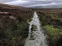 Run Ben Bouie loop.  : Looking back at Glen Fuin