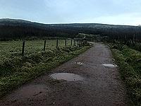 Run Ben Bouie loop.  : Past the farm building