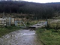 Run Ben Bouie loop.  : Weird gate for a wee jump over
