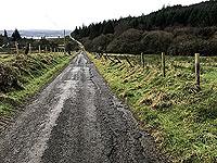 Run Ben Bouie loop.  : Stoneymollan road