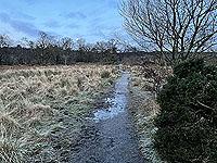 Run Ben Bouie loop.  : Can get a little muddy