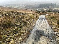 Run Ben Bouie loop.  : Mudddy trail from Geln Fruin road