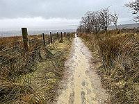 Run Ben Bouie loop.  : A rather wet descent