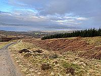 Run Ben Bouie loop  :  Higher up the hill