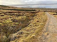 Run Ben Bouie loop : Towards Ardmore point