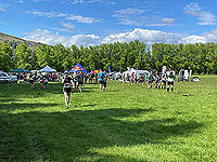 Gallus Running  : Starting to get busy