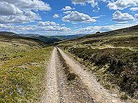 Gallus Running  : Still going down hill