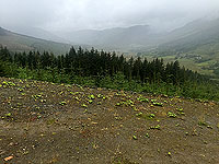 A view down the glen from Balquhidder station