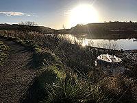 Sunshine on Cocksburn reservoir running route