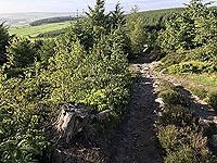 Running near Aberdeen airport