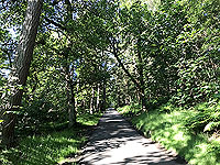 Loch Skene running