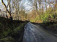 Road towards Stirling university