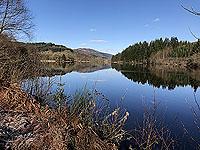Reflections on Loch Ard