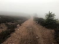Mist on the Firmounth