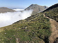 Descent from the Cobbler