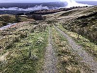 Running view in Glen Kendrum