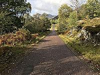 The single track road in Glen Strathfarrar