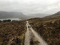 Loch Affric north side