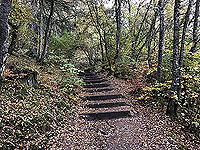The Birks in autumn at Aberfeldy
