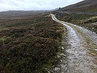 Grouse moor on the Craig hill loop