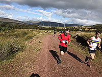 Runners heading up hill on the Hel N Back hill race.